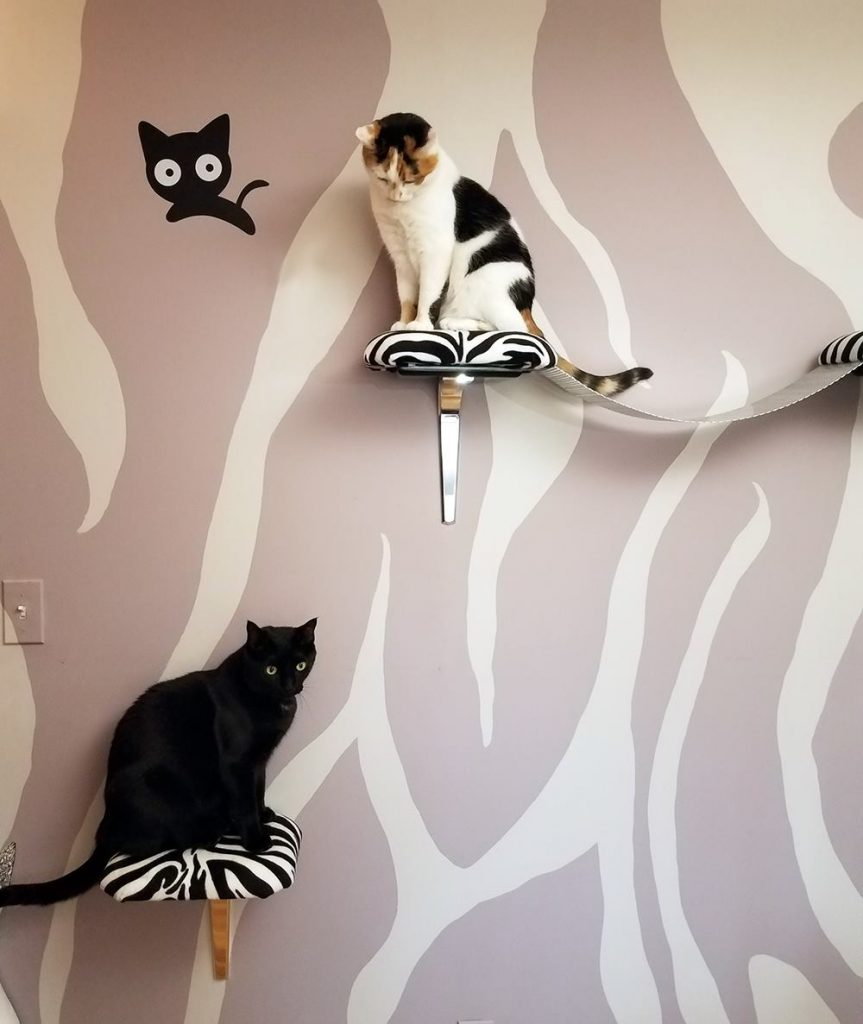 Purr Cat Cafe will be furnished by Aristocat Designs, designer & custom cat furniture.