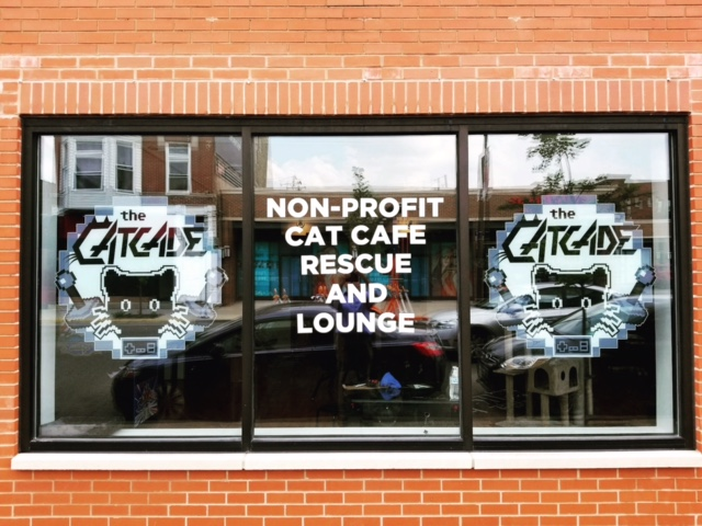 CatCade, Chicago Cat Lounge