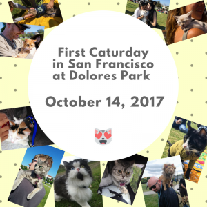 First Caturday in Delores Park