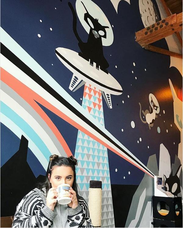 Purringtons Cat Cafe