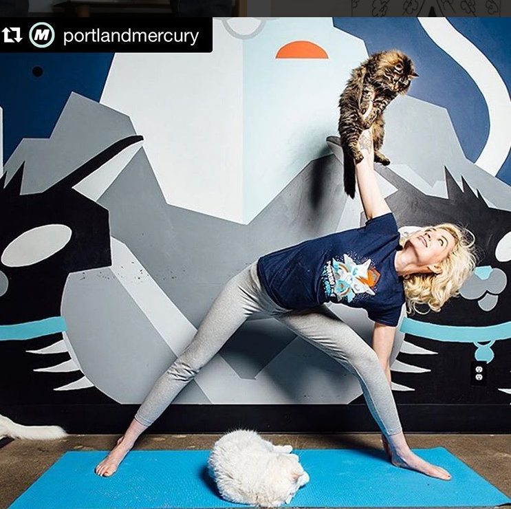 Yoga at Purrington Cat Cafe