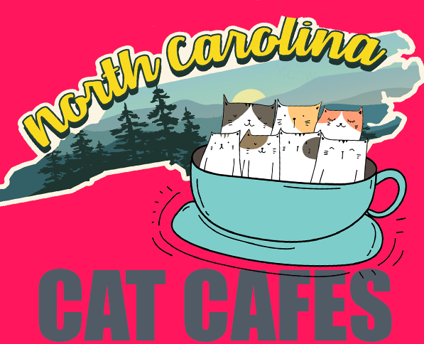 North Carolina Cat Cafes