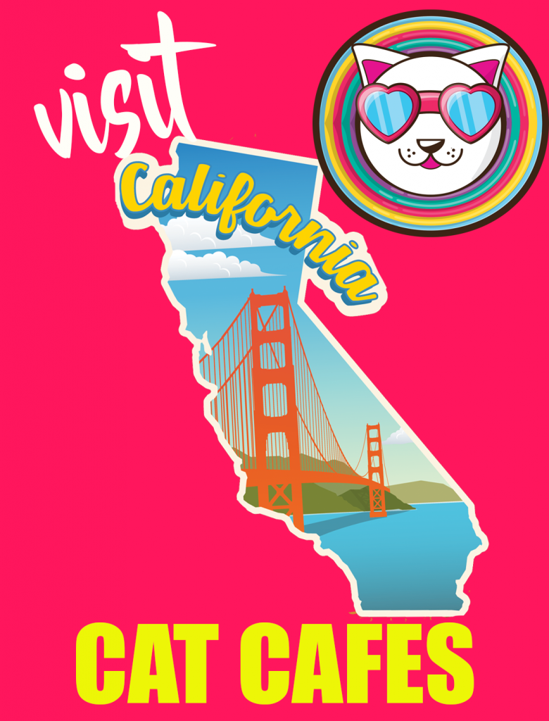 Visit California Cat Cafes