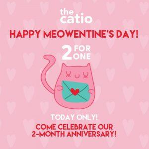 Catio Nashville Valentine Special
