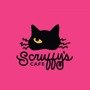 New Knoxville Cat Cafe Opening