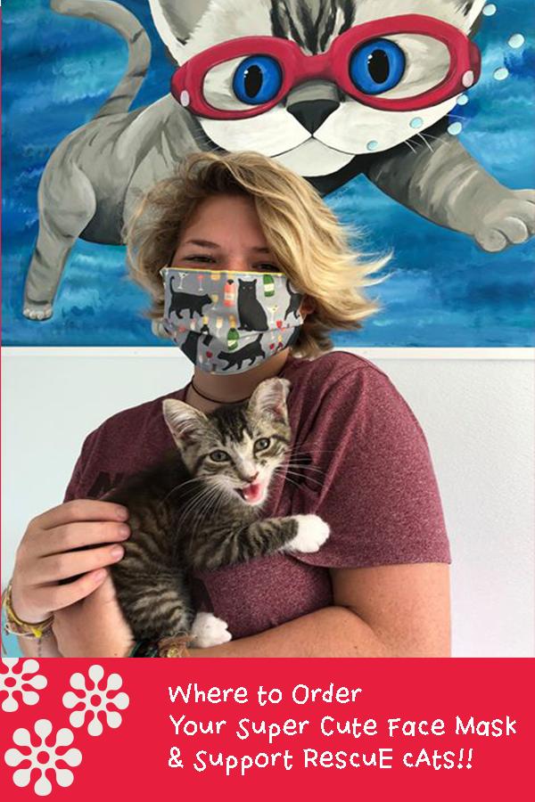 Cat Face Mask Pin